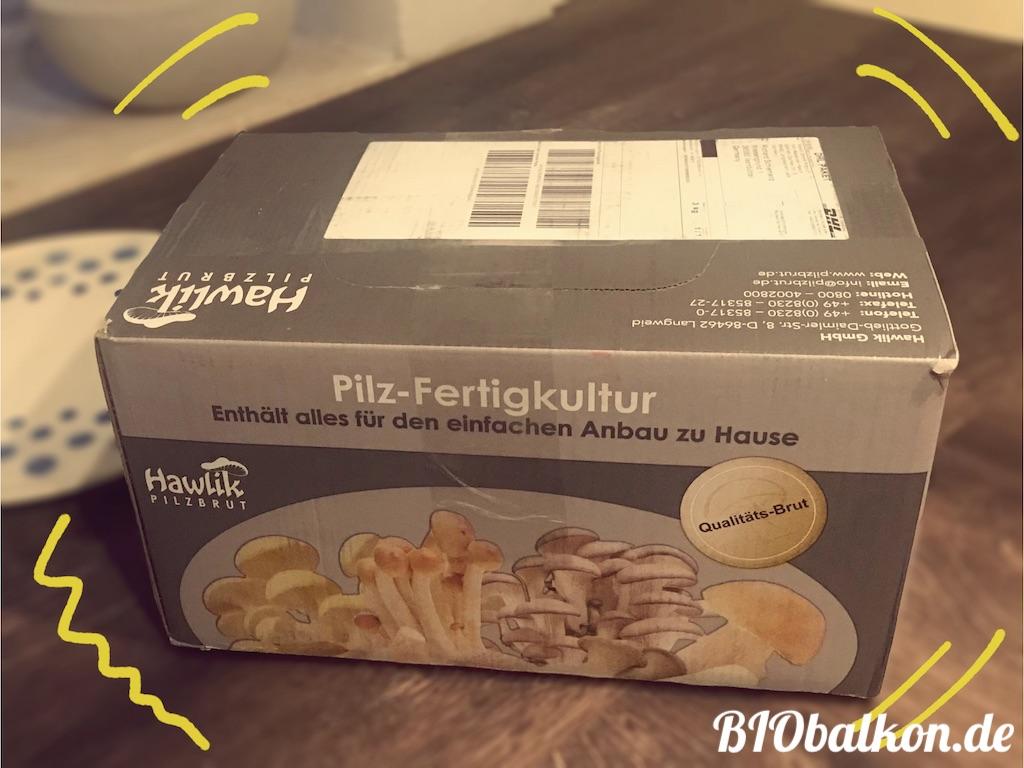 Pilzanbauset Verpackung